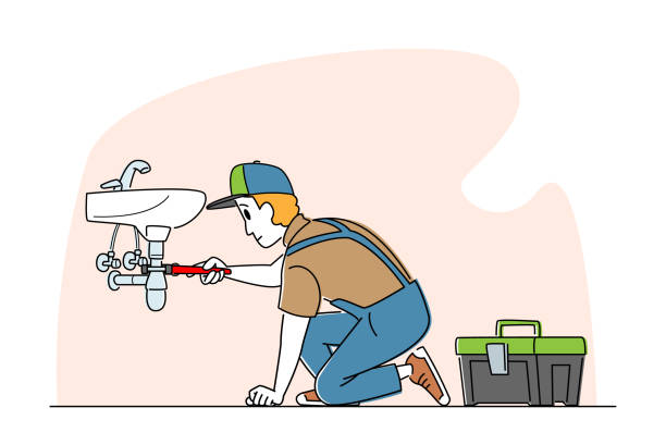 Helpful Information To Find The Best Plumber Fairy Meadow