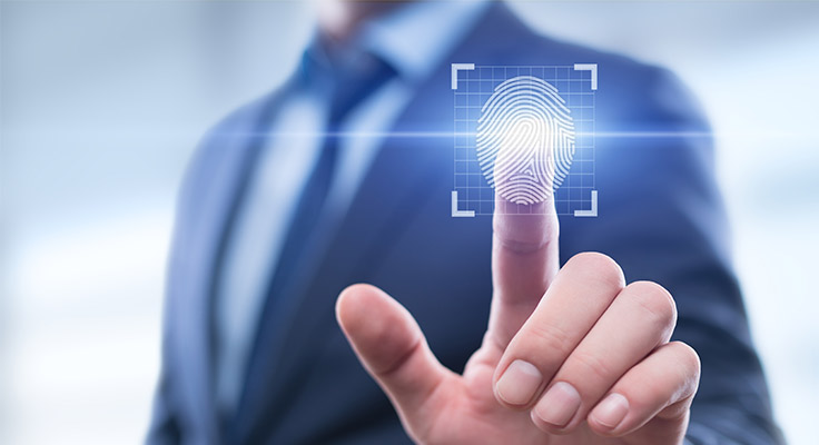 Physical And Behavioral Identifiers For Biometric Verification