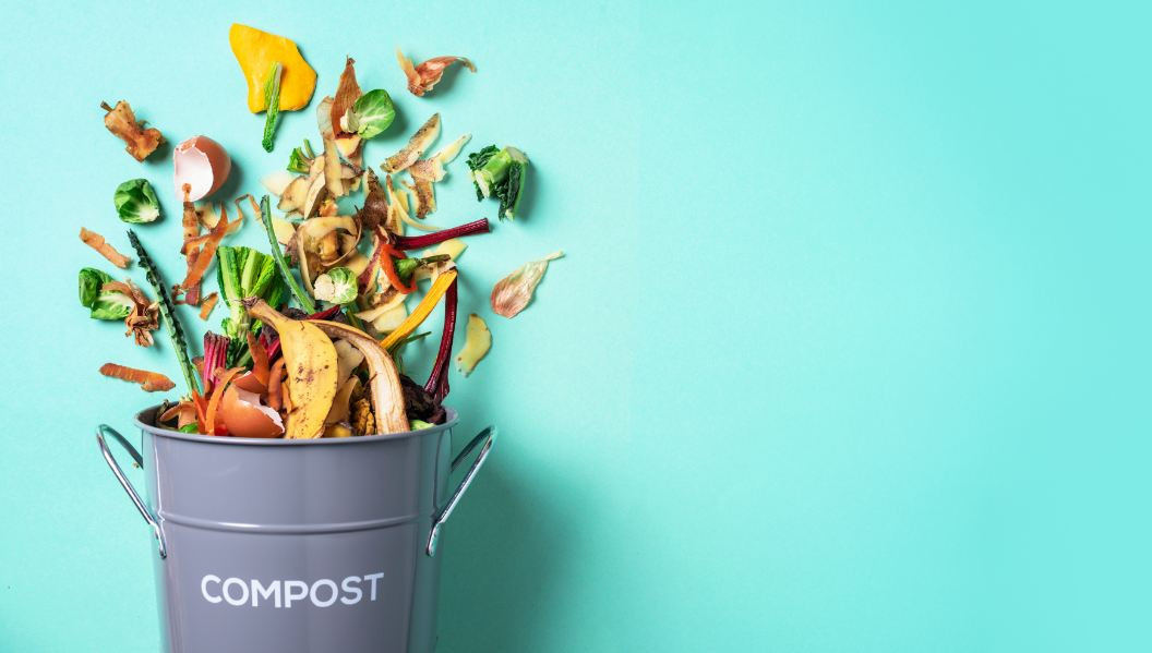 4 Eco-Friendly Ways To Dispose Of Household Waste