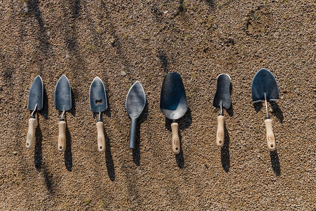 5 Essential Garden Tools Every First-Time Gardener Should Have